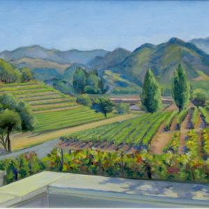 Vineyards in rows are seen against a background of California hills