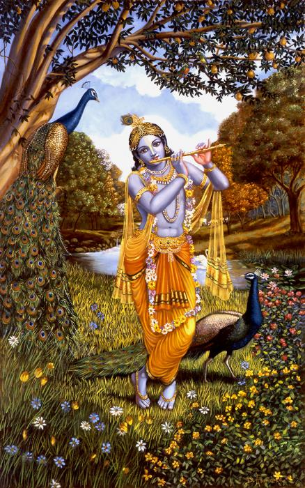 Krishna is playing the flute, standing in nature and flowers with peacocks.