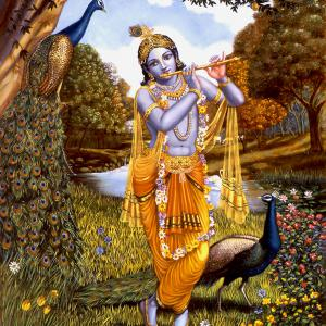 Krishna is standing in nature playing the flute near a peacock.