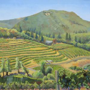 A beautiful green hill covered with vineyards.
